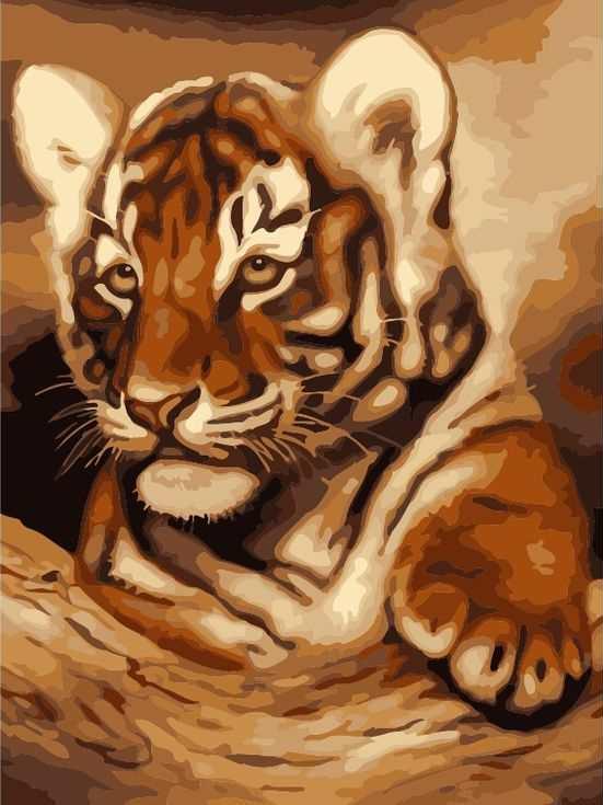 «Тигренок»Paintboy (Premium)<br><br><br>Артикул: GX7272<br>Основа: Холст<br>Сложность: легкие<br>Размер: 40x50 см<br>Количество цветов: 17<br>Техника рисования: Без смешивания красок