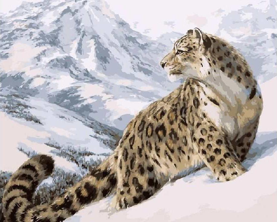 Картина по номерам «Снежный барс»Раскраски по номерам Paintboy (Original)<br><br>