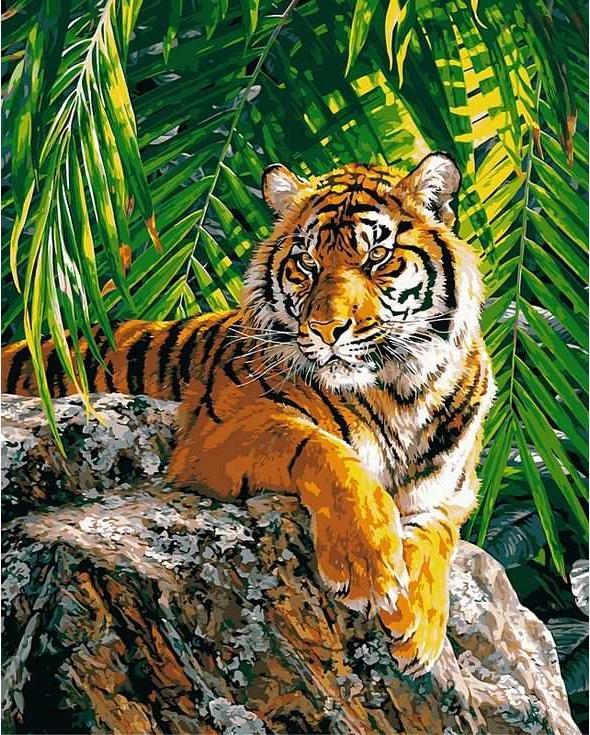 Картина по номерам «Тигр в джунглях»Paintboy (Premium)<br><br><br>Артикул: GX8306<br>Основа: Холст<br>Сложность: средние<br>Размер: 40x50 см<br>Количество цветов: 24<br>Техника рисования: Без смешивания красок