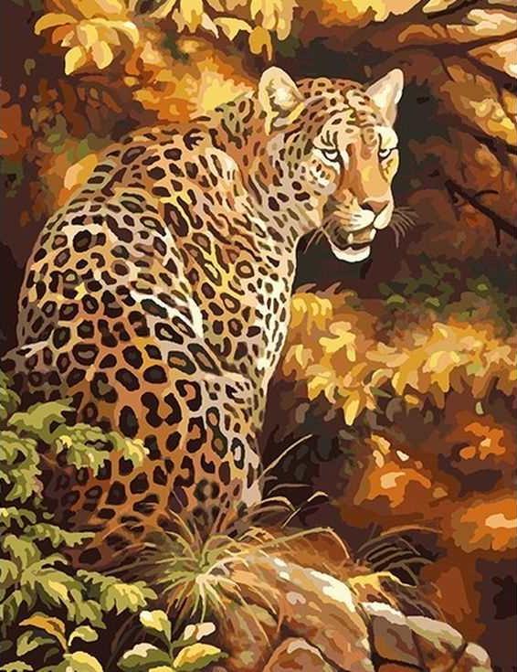 «Леопард в осеннем золоте»Раскраски по номерам Paintboy (Original)<br><br><br>Артикул: GX8340_R<br>Основа: Холст<br>Сложность: средние<br>Размер: 40x50 см<br>Количество цветов: 26<br>Техника рисования: Без смешивания красок