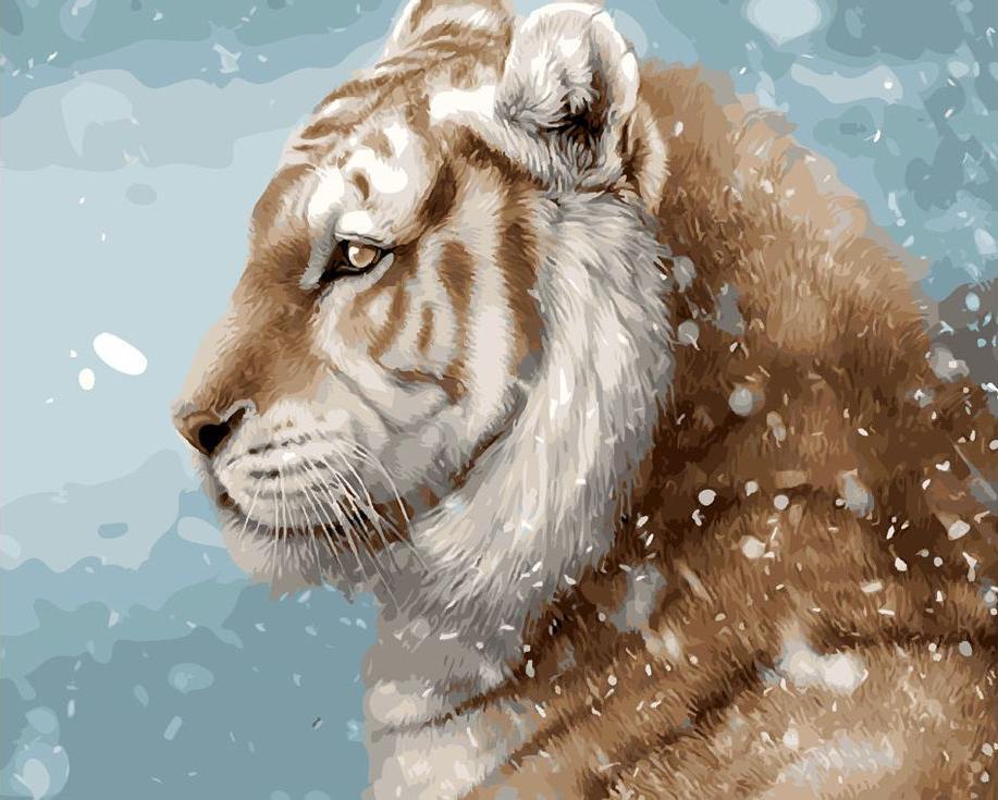 Картина по номерам «Зимний тигр»Цветной (Standart)<br><br><br>Артикул: GX9641_Z<br>Основа: Холст<br>Сложность: средние<br>Размер: 40x50 см<br>Количество цветов: 24<br>Техника рисования: Без смешивания красок