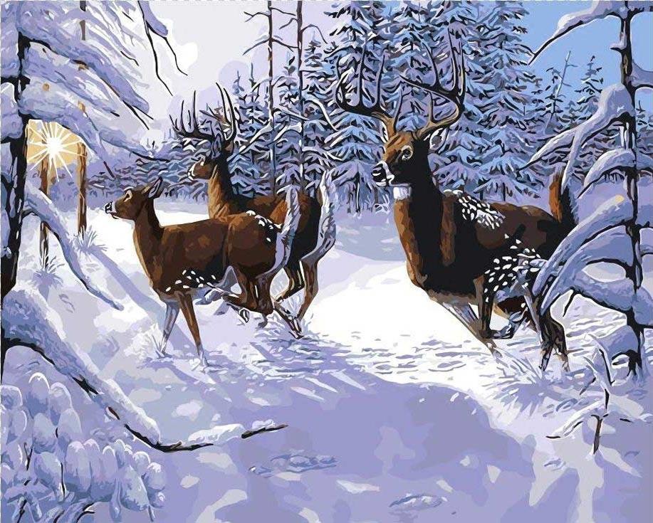 «Зимнее великолепие» Джина СтюартаЦветной (Standart)<br><br><br>Артикул: GX9642_Z<br>Основа: Холст<br>Сложность: сложные<br>Размер: 40x50 см<br>Количество цветов: 25<br>Техника рисования: Без смешивания красок