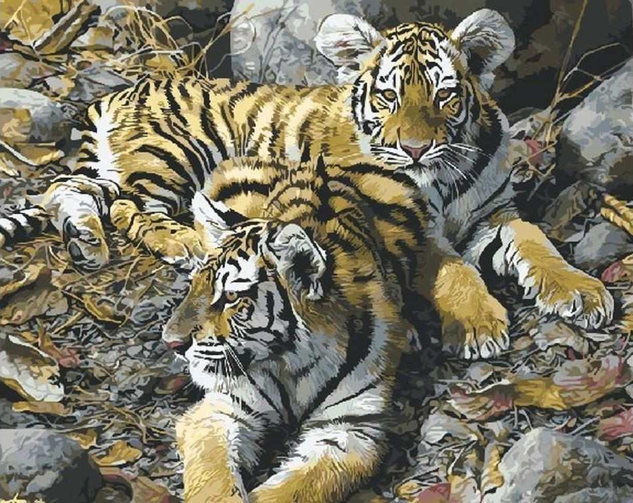 «Тигры на отдыхе»Paintboy (Premium)<br><br><br>Артикул: GX9965<br>Основа: Холст<br>Сложность: средние<br>Размер: 40x50 см<br>Количество цветов: 22<br>Техника рисования: Без смешивания красок