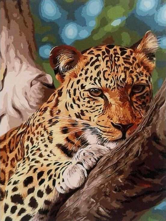 «Леопард на отдыхе»Раскраски по номерам Paintboy (Original)<br><br><br>Артикул: GX9987_R<br>Основа: Холст<br>Сложность: средние<br>Размер: 40x50 см<br>Количество цветов: 24<br>Техника рисования: Без смешивания красок