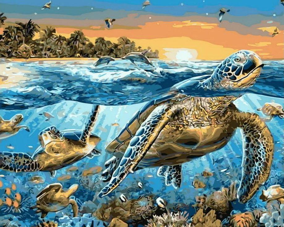 «Морские черепахи» Андриана ЧестерманаРаскраски по номерам Menglei (Standart)<br><br><br>Артикул: MG8031_S<br>Основа: Холст<br>Сложность: сложные<br>Размер: 40x50 см<br>Количество цветов: 23<br>Техника рисования: Без смешивания красок