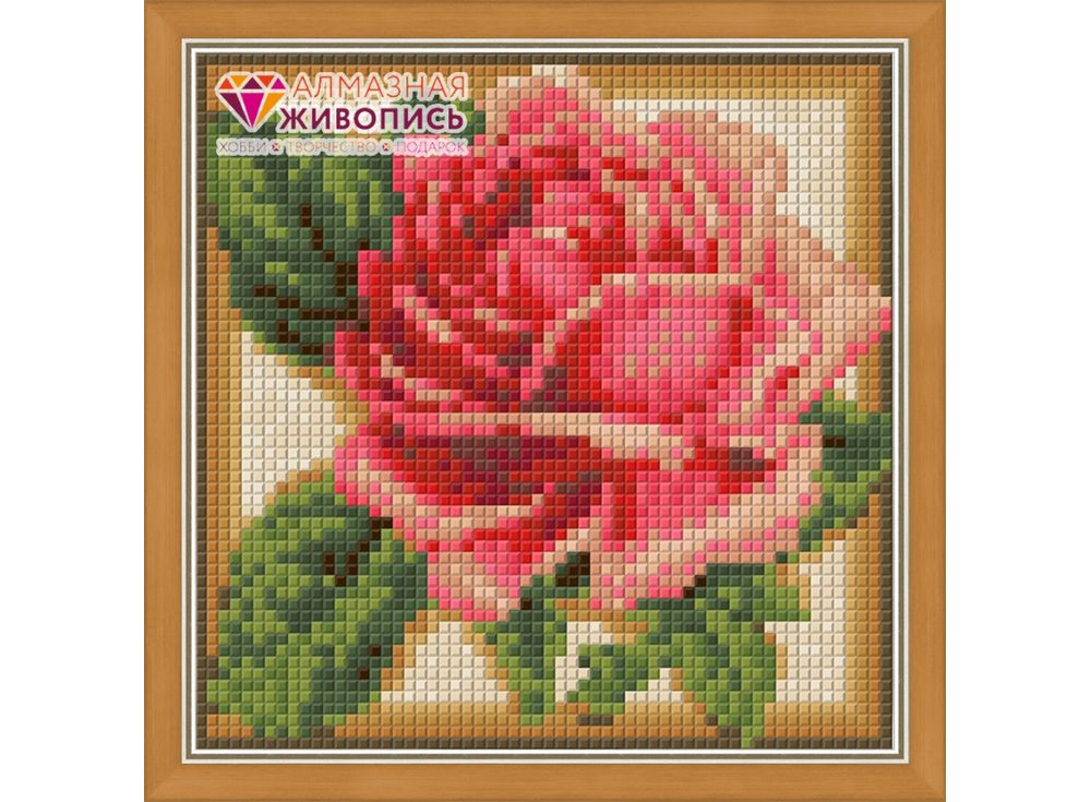 Купить Алмазная вышивка «Румяная роза», Алмазная Живопись