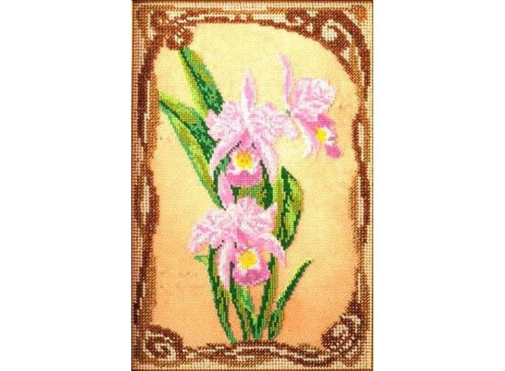 Набор вышивки бисером «Грациозные орхидеи»Вышивка бисером Кроше (Радуга бисера)<br><br><br>Артикул: В-416<br>Основа: ткань<br>Размер: 17x26 см<br>Техника вышивки: бисер<br>Тип схемы вышивки: Цветная схема<br>Заполнение: Частичное<br>Рисунок на канве: нанесён рисунок и схема<br>Техника: Вышивка бисером