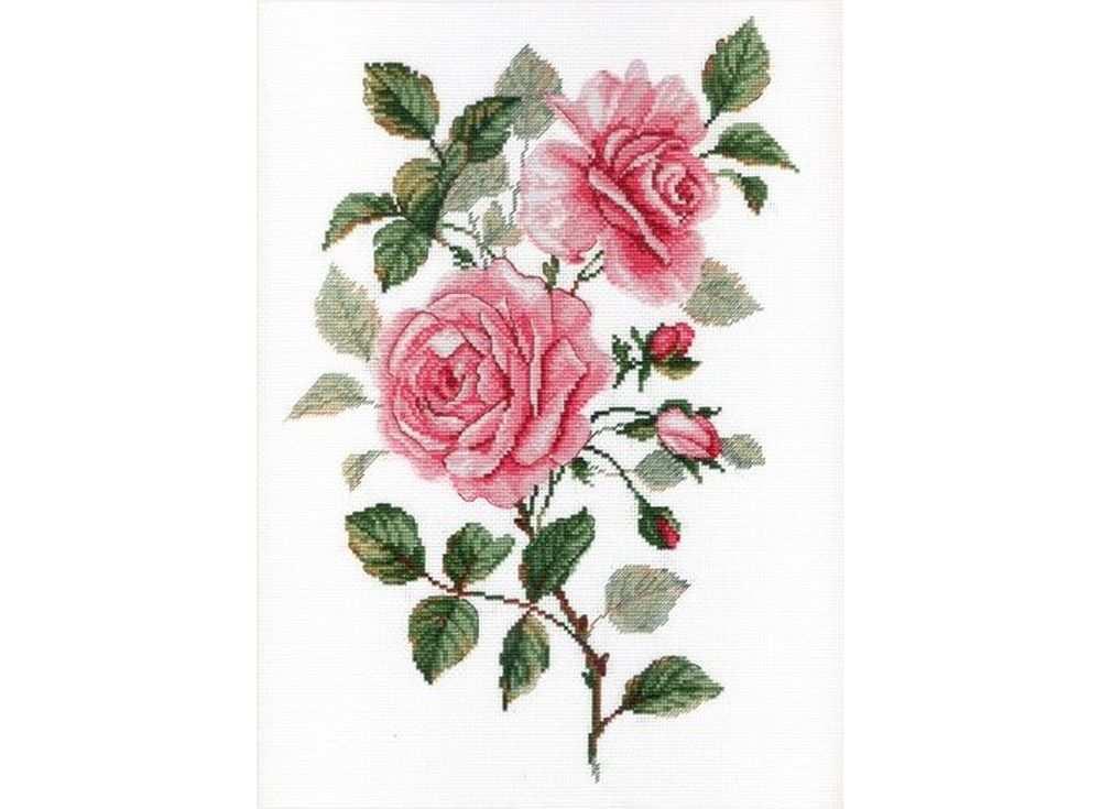 Набор для вышивания «Садовые розы»Вышивка крестом МП-студия<br><br><br>Артикул: НВ-541<br>Основа: канва Aida 18<br>Размер: 35х25 см<br>Техника вышивки: счетный крест<br>Тип схемы вышивки: Цветная схема<br>Цвет канвы: Белый<br>Количество цветов: 15<br>Рисунок на канве: не нанесён<br>Техника: Вышивка крестом