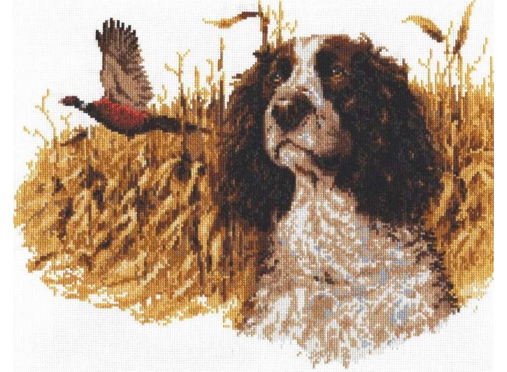 Набор для вышивания «Спаниель и фазан»Вышивка крестом<br><br>