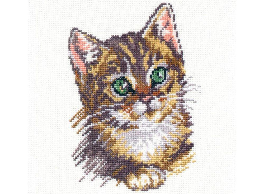 Набор для вышивания «Котенок»Вышивка крестом Алиса<br><br><br>Артикул: 1-04<br>Основа: канва Aida 14 100% хлопок Gamma<br>Размер: 14х18 см<br>Тип схемы вышивки: Цветная схема<br>Цвет канвы: Белый<br>Количество цветов: 11<br>Рисунок на канве: не нанесён<br>Техника: Вышивка крестом<br>Нитки: мулине 100% хлопок Gamma