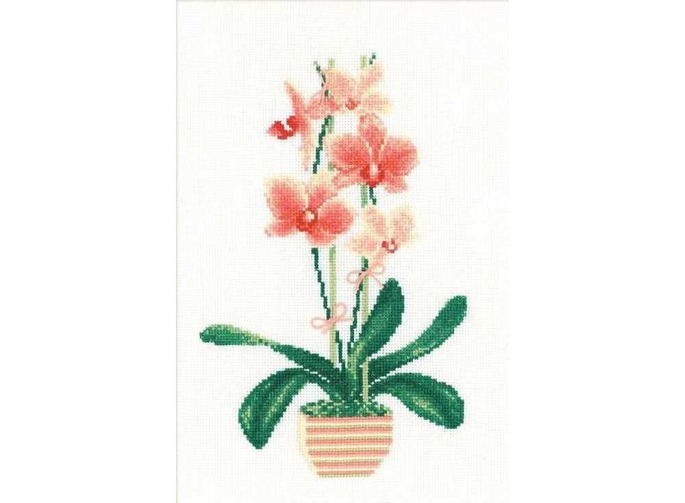 Набор для вышивания «Жёлтая орхидея»Вышивка крестом Риолис<br><br><br>Артикул: 1161<br>Основа: канва 14 Aida Zweigart<br>Размер: 21x30 см<br>Техника вышивки: счетный крест<br>Серия: Риолис (Сотвори Сама)<br>Тип схемы вышивки: Цветная схема<br>Цвет канвы: Белый<br>Количество цветов: 12<br>Художник, дизайнер: Илья Киселёв<br>Заполнение: Полное<br>Рисунок на канве: не нанесён<br>Техника: Вышивка крестом