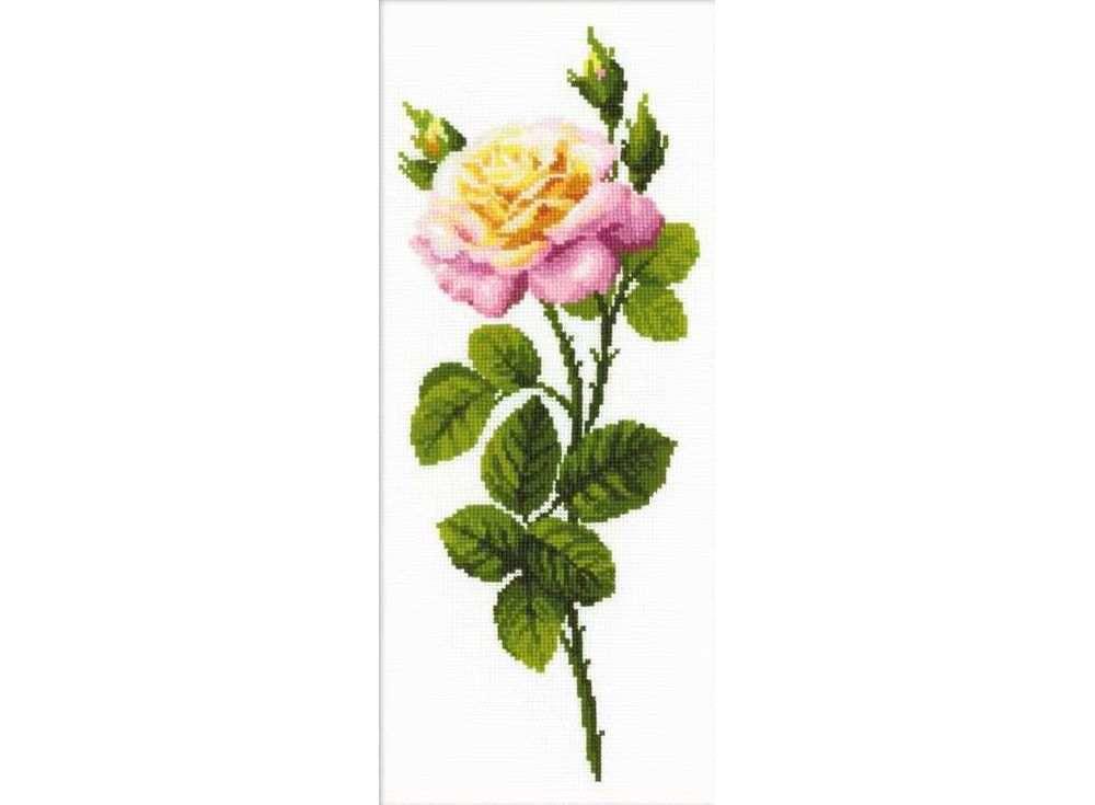 Набор для вышивания «Дивный цветок»Вышивка крестом Риолис<br><br><br>Артикул: 1331<br>Основа: канва 10 Aida Zweigart<br>Размер: 20x50 см<br>Техника вышивки: счетный крест<br>Серия: Риолис (Сотвори Сама)<br>Тип схемы вышивки: Цветная схема<br>Цвет канвы: Белый<br>Количество цветов: 16<br>Художник, дизайнер: Анна Король<br>Заполнение: Полное<br>Рисунок на канве: не нанесён<br>Техника: Вышивка крестом