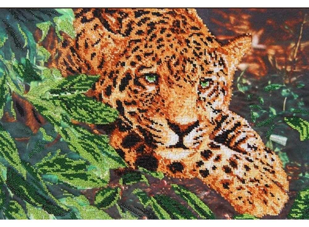 Набор вышивки бисером «Леопард» Коллина БоглаВышивка бисером Астрея (Глурия)<br><br><br>Артикул: 53047<br>Основа: габардин<br>Размер: 40x28 см<br>Техника вышивки: бисер<br>Тип схемы вышивки: Цветная схема<br>Количество цветов: 10<br>Заполнение: Частичное<br>Рисунок на канве: нанесён рисунок и схема<br>Техника: Вышивка бисером