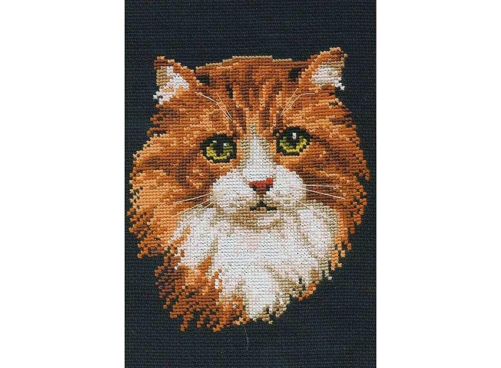 Набор для вышивания «Рыжий кот»Вышивка крестом Риолис<br><br><br>Артикул: 765<br>Основа: канва 10 Aida Zweigart<br>Размер: 21x30 см<br>Техника вышивки: счетный крест<br>Серия: Риолис (Сотвори Сама)<br>Тип схемы вышивки: Цветная схема<br>Цвет канвы: Черный<br>Количество цветов: 12<br>Художник, дизайнер: Анна Король<br>Заполнение: Полное<br>Рисунок на канве: не нанесён<br>Техника: Вышивка крестом