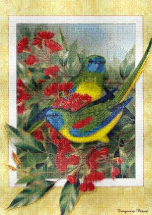 Стразы «Яркие пташки»Цветной<br><br><br>Артикул: AG335<br>Основа: Холст на подрамнике<br>Сложность: сложные<br>Размер: 40x50 см<br>Выкладка: Полная<br>Количество цветов: 20-35<br>Тип страз: Круглые непрозрачные (акриловые)