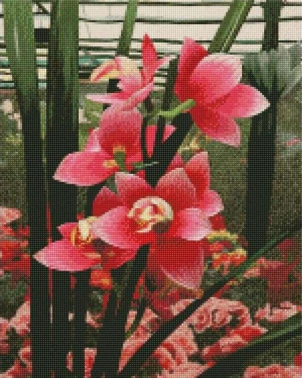 Стразы «Нежные орхидеи»Цветной<br><br><br>Артикул: AG340<br>Основа: Холст на подрамнике<br>Сложность: сложные<br>Размер: 40x50 см<br>Выкладка: Полная<br>Количество цветов: 20-35<br>Тип страз: Круглые непрозрачные (акриловые)