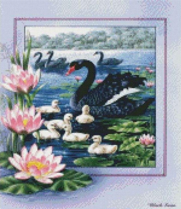 Стразы «Черные лебеди»Цветной<br><br><br>Артикул: AG342<br>Основа: Холст на подрамнике<br>Сложность: сложные<br>Размер: 40x50 см<br>Выкладка: Полная<br>Количество цветов: 20-35<br>Тип страз: Круглые непрозрачные (акриловые)