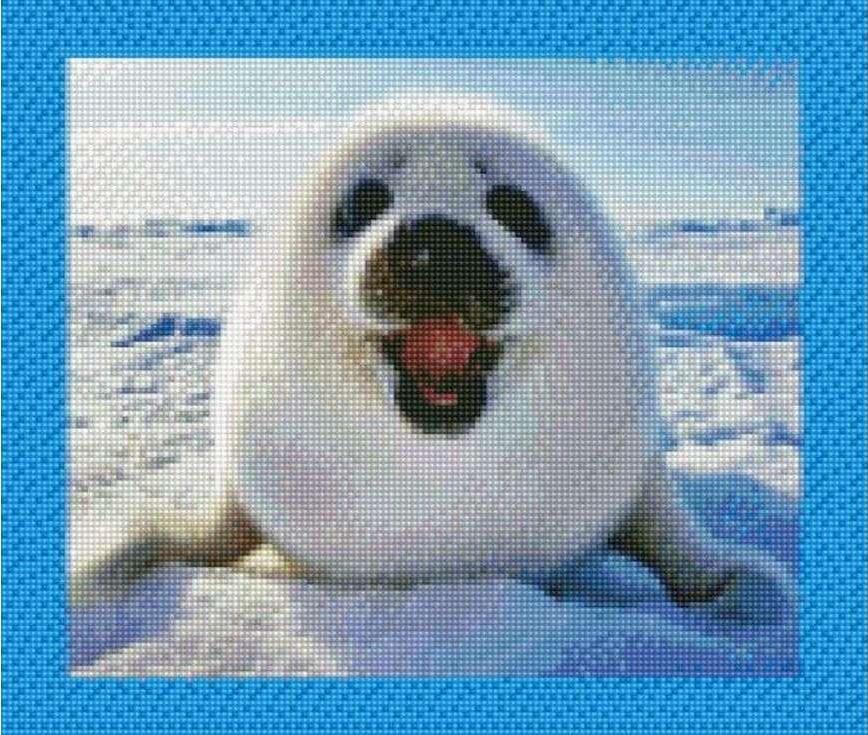 Стразы «Морской котик»Цветной<br><br><br>Артикул: AG351<br>Основа: Холст на подрамнике<br>Сложность: сложные<br>Размер: 40x50 см<br>Выкладка: Полная<br>Количество цветов: 20-35<br>Тип страз: Круглые непрозрачные (акриловые)