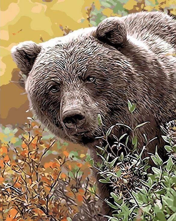 Картина по номерам «Бурый медведь»Цветной (Standart)<br><br><br>Артикул: GX8920_Z<br>Основа: Холст<br>Сложность: сложные<br>Размер: 40x50 см<br>Количество цветов: 25<br>Техника рисования: Без смешивания красок