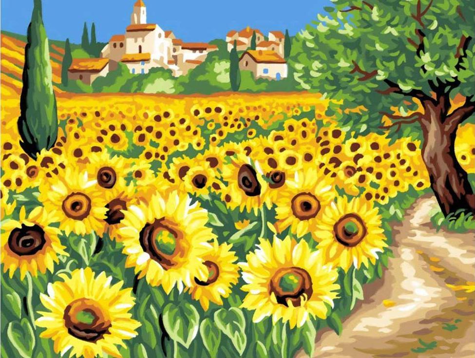 Картина по номерам «Поле подсолнухов»