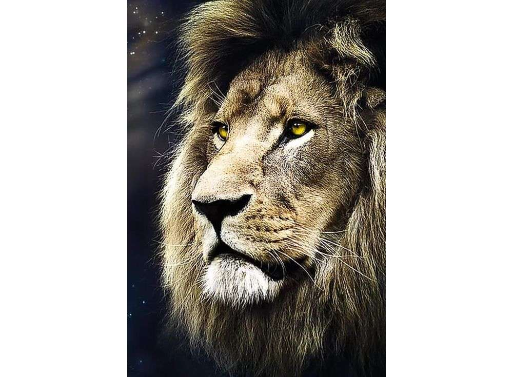 Пазлы «Портрет льва»Trefl<br><br><br>Артикул: 26139<br>Размер: 85x58 см<br>Возраст: от 12 лет