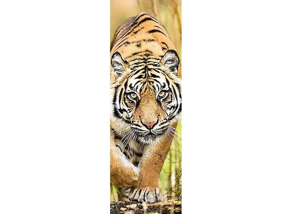 Пазлы «Затаившийся тигр»Trefl<br><br><br>Артикул: 75002<br>Размер: 16x48 см<br>Возраст: от 14 лет