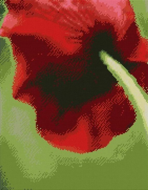 Стразы «Красный тюльпан»Цветной<br><br><br>Артикул: A134<br>Основа: Холст на подрамнике<br>Сложность: сложные<br>Размер: 40x50 см<br>Выкладка: Полная<br>Количество цветов: 20-35<br>Тип страз: Круглые непрозрачные (акриловые)