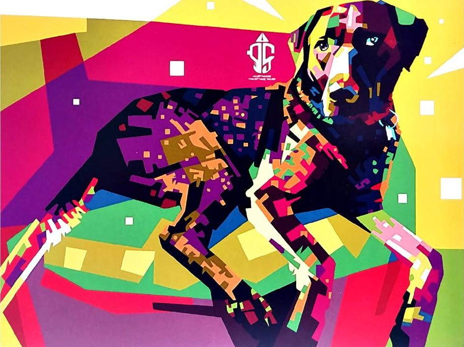 Картина по номерам «Цветной дог»Paintboy (Premium)<br><br><br>Артикул: GX3960<br>Основа: Холст<br>Сложность: средние<br>Размер: 40x50 см<br>Количество цветов: 21<br>Техника рисования: Без смешивания красок