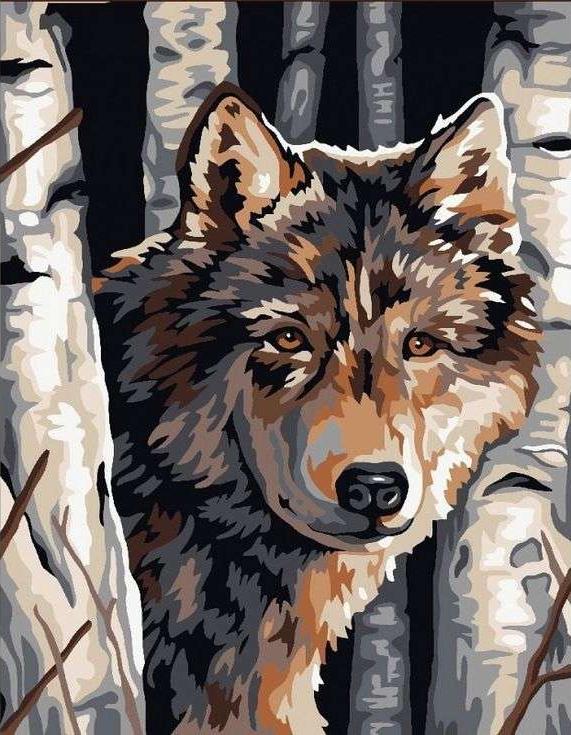 Картина по номерам «Волк среди берез»Paintboy (Premium)<br><br><br>Артикул: GX6012<br>Основа: Холст<br>Сложность: сложные<br>Размер: 40x50 см<br>Количество цветов: 12<br>Техника рисования: Без смешивания красок