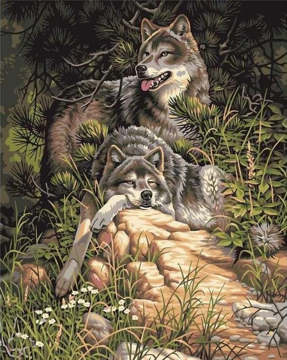 «Дикие и свободные волки» Ларри ФэннингаPaintboy (Premium)<br><br><br>Артикул: GX6177<br>Основа: Холст<br>Сложность: сложные<br>Размер: 40x50 см<br>Количество цветов: 15<br>Техника рисования: Без смешивания красок
