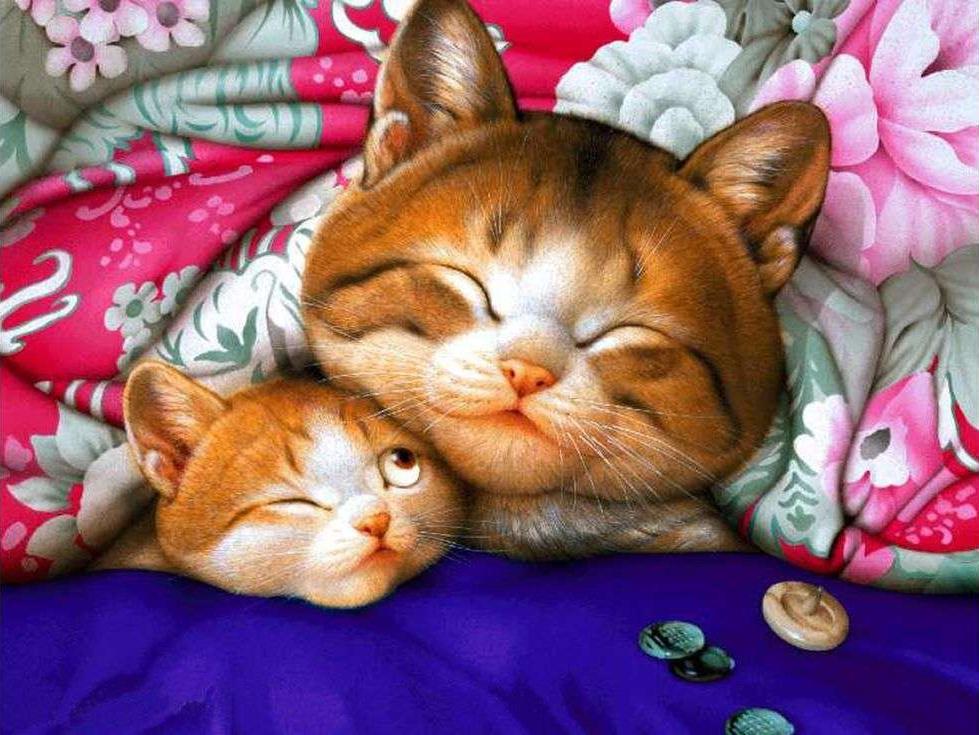 «Мама кошка»Paintboy (Premium)<br><br><br>Артикул: GX9765<br>Основа: Холст<br>Сложность: сложные<br>Размер: 40x50 см<br>Количество цветов: 25<br>Техника рисования: Без смешивания красок