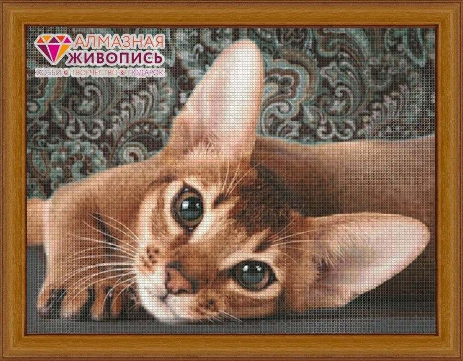 Алмазная вышивка «Абиссинская кошка»Алмазная Живопись<br><br><br>Артикул: АЖ-1458<br>Основа: Холст без подрамника<br>Сложность: средние<br>Размер: 30x40 см<br>Выкладка: Полная<br>Количество цветов: 31<br>Тип страз: Квадратные