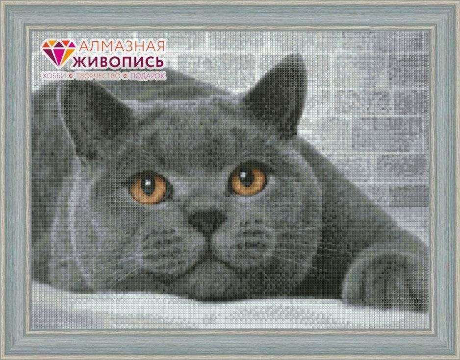 Стразы «Британский кот»Алмазная Живопись<br><br><br>Артикул: АЖ-1463<br>Основа: Холст без подрамника<br>Сложность: средние<br>Размер: 30x40 см<br>Выкладка: Полная<br>Количество цветов: 17<br>Тип страз: Квадратные