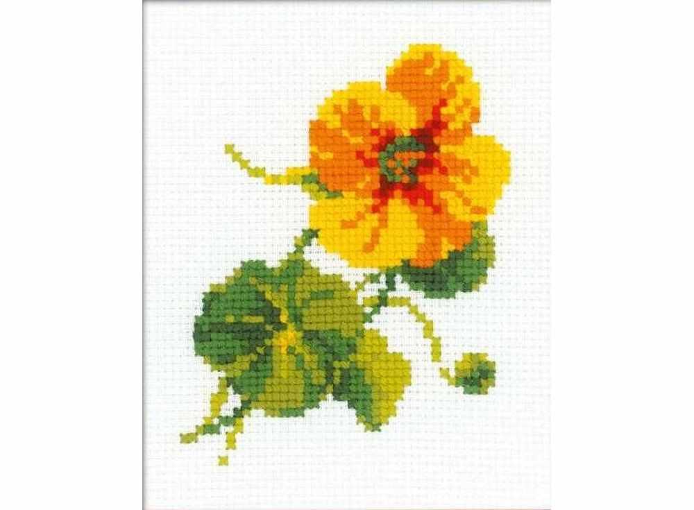 Набор для вышивания «Настурция»Вышивка крестом Риолис<br><br><br>Артикул: НВ135<br>Основа: канва 10 Aida Zweigart<br>Размер: 13x16 см<br>Техника вышивки: счетный крест<br>Серия: Риолис (Веселая пчелка)<br>Тип схемы вышивки: Цветная схема<br>Цвет канвы: Белый<br>Количество цветов: 8<br>Художник, дизайнер: Анна Петросян<br>Заполнение: Частичное<br>Игла: 1 вид<br>Рисунок на канве: не нанесён<br>Техника: Вышивка крестом<br>Нитки: шерсть/акрил Safil