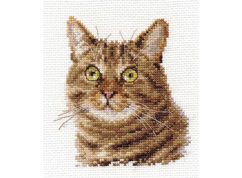Набор для вышивания «Европейский кот»Вышивка крестом Алиса<br><br><br>Артикул: 0-135<br>Основа: канва Aida 14 100% хлопок Gamma<br>Размер: 11x12 см<br>Техника вышивки: счетный крест<br>Тип схемы вышивки: Цветная схема<br>Цвет канвы: Белый<br>Количество цветов: 13<br>Заполнение: Частичное<br>Игла: Gamma<br>Рисунок на канве: не нанесён<br>Техника: Вышивка крестом<br>Нитки: Мулине Gamma