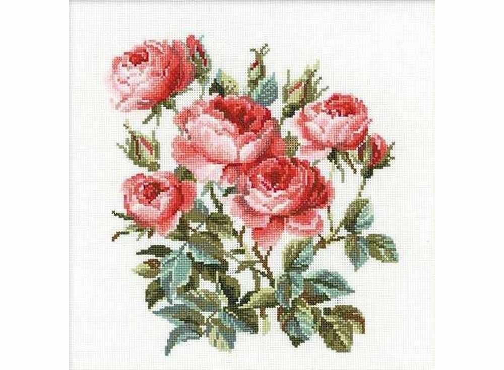 Набор для вышивания «Садовые розы»Вышивка крестом Риолис<br><br><br>Артикул: 1046<br>Основа: канва 10 Aida Zweigart<br>Размер: 40x40 см<br>Техника вышивки: счетный крест<br>Серия: Риолис (Сотвори Сама)<br>Тип схемы вышивки: Цветная схема<br>Цвет канвы: Белый<br>Количество цветов: 19<br>Художник, дизайнер: Юлия Красавина<br>Заполнение: Частичное<br>Игла: 1 вид<br>Рисунок на канве: не нанесён<br>Техника: Вышивка крестом<br>Нитки: шерсть/акрил Safil