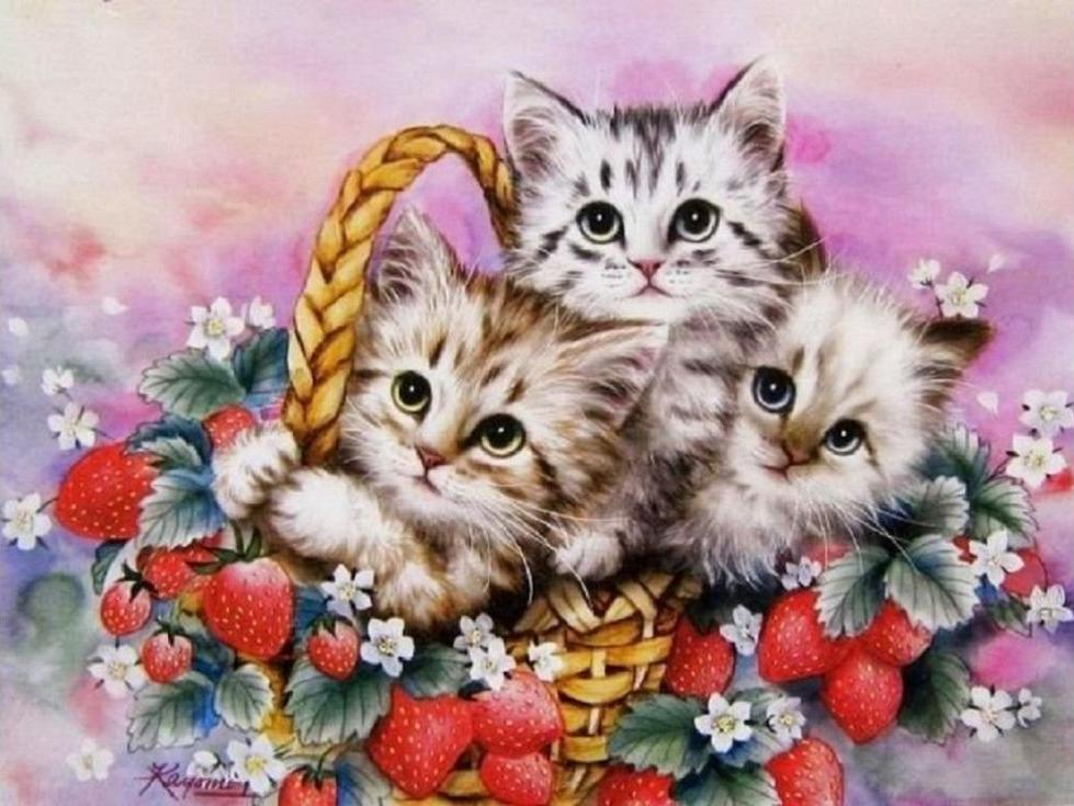 «Корзина с котятами» Кайоми ХарайPaintboy (Premium)<br><br><br>Артикул: GX4129<br>Основа: Холст<br>Сложность: сложные<br>Размер: 40x50 см<br>Количество цветов: 30<br>Техника рисования: Без смешивания красок