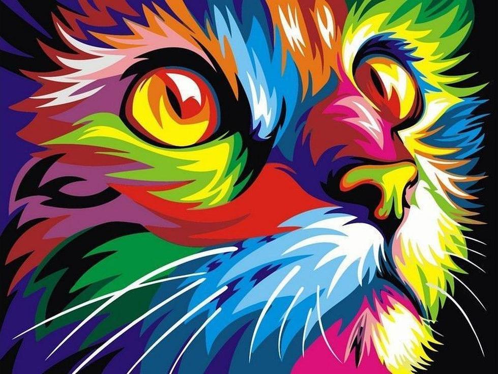 Картина по номерам «Радужный кот» Ваю РомдониPaintboy (Premium)<br><br><br>Артикул: GX4228<br>Основа: Холст<br>Сложность: сложные<br>Размер: 40x50 см<br>Количество цветов: 17<br>Техника рисования: Без смешивания красок