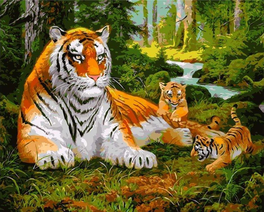 Картина по номерам «Тигрица с тигрятами на прогулке» Сунг ЛиPaintboy (Premium)<br><br><br>Артикул: GX8479<br>Основа: Холст<br>Сложность: сложные<br>Размер: 40x50 см<br>Художник: Сунг Ли<br>Количество цветов: 26<br>Техника рисования: Без смешивания красок