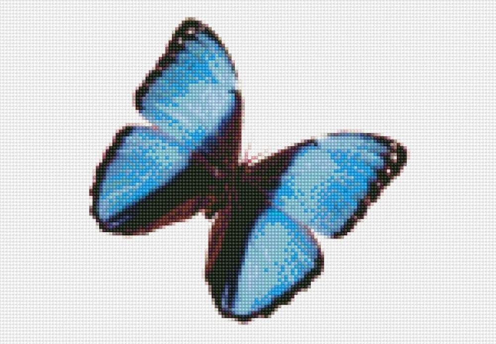 Алмазная вышивка «Бабочка Морфида тропическая»Цветной<br>Инновационный вариант алмазной вышивки бренда «Цветной». Новые идеи, которые делают наборы от этого производителя ценным подарком:<br><br>холст, натянутый на деревянный подрамник, с закрепленным плотным картоном. Выкладывать стразы на такую основу легко и ко...<br><br>Артикул: CI-023<br>Основа: Холст на подрамнике<br>Сложность: сложные<br>Размер: 30x40 см<br>Выкладка: Полная<br>Количество цветов: 20-35<br>Тип страз: Круглые непрозрачные (акриловые)