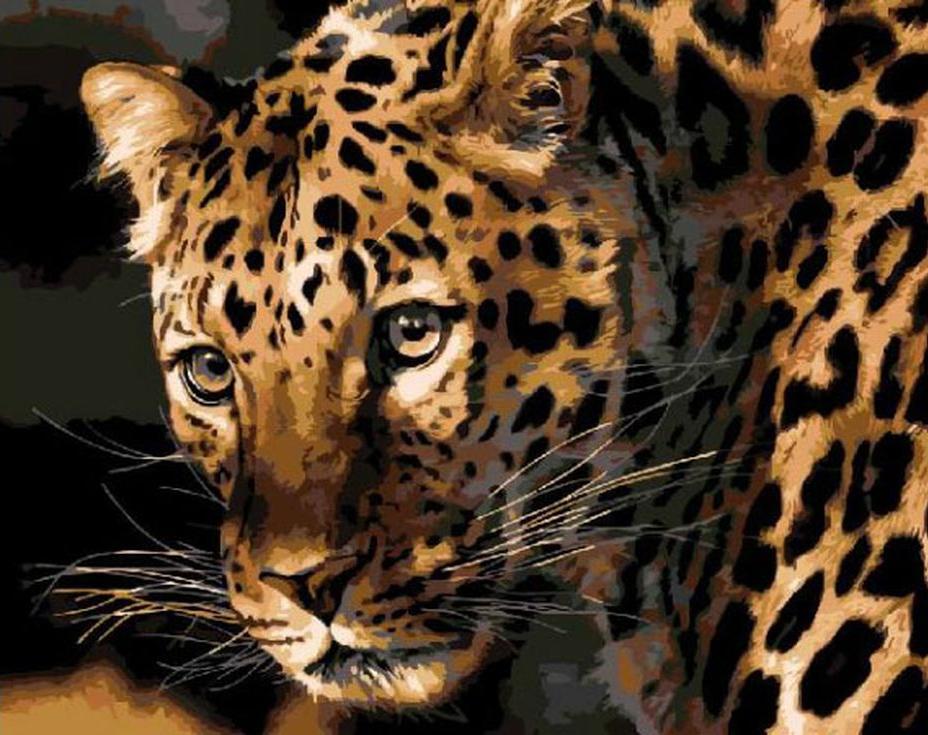«Портрет леопарда»Раскраски по номерам Paintboy (Original)<br><br><br>Артикул: GX3779_R<br>Основа: Холст<br>Сложность: легкие<br>Размер: 40x50 см<br>Количество цветов: 15<br>Техника рисования: Без смешивания красок