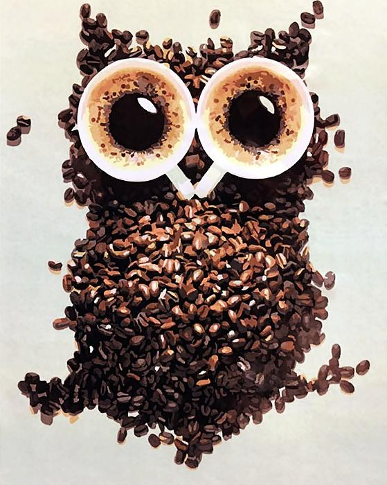Картина по номерам «Кофейная сова»Paintboy (Premium)<br><br><br>Артикул: GX4493<br>Основа: Холст<br>Сложность: легкие<br>Размер: 40x50 см<br>Количество цветов: 17<br>Техника рисования: Без смешивания красок