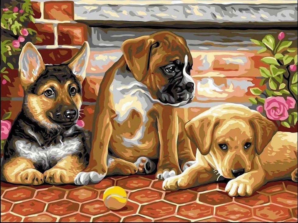 Картина по номерам «Три щенка»Раскраски по номерам<br><br>
