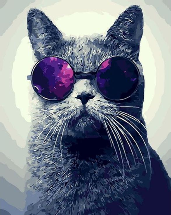 Картина по номерам «Кот в очках»Menglei (Premium)<br><br><br>Артикул: MG-7962<br>Основа: Холст<br>Сложность: сложные<br>Размер: 40x50 см<br>Количество цветов: 25<br>Техника рисования: Без смешивания красок