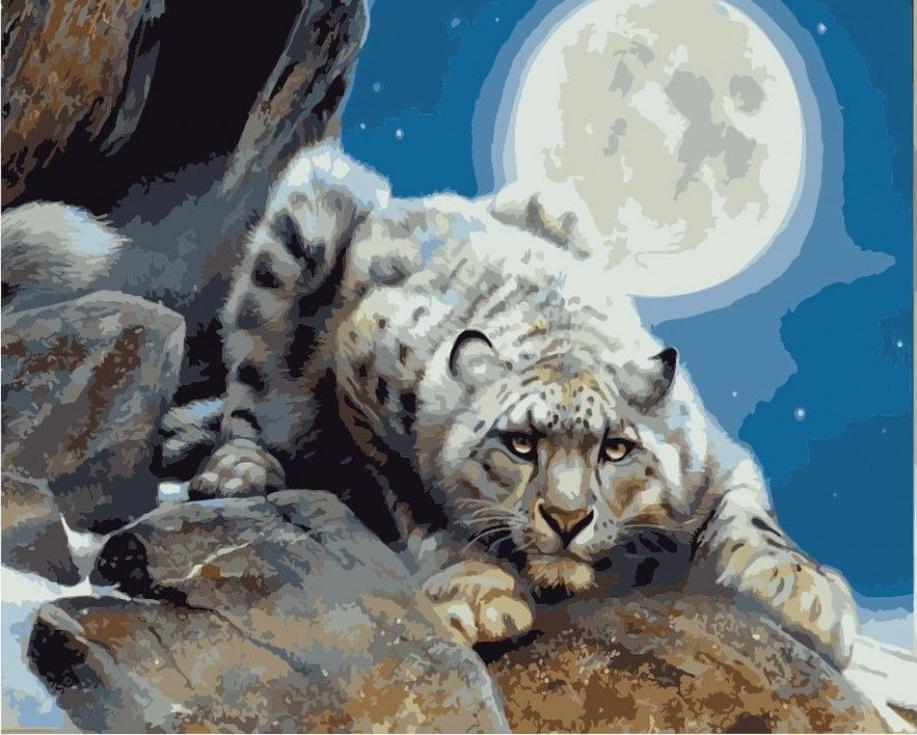 Картина по номерам «Снежный леопард» Кевина ДаниэляЦветной (Premium)<br><br><br>Артикул: MG3251_Z<br>Основа: Холст<br>Сложность: сложные<br>Размер: 40x50 см<br>Количество цветов: 25<br>Техника рисования: Без смешивания красок