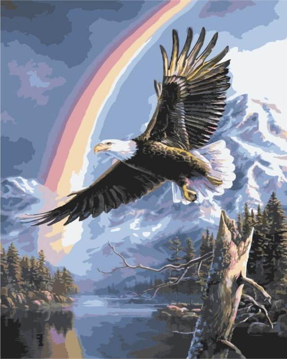 Картина по номерам «Полёт орла»Цветной (Premium)<br><br><br>Артикул: MG3260_Z<br>Основа: Холст<br>Сложность: сложные<br>Размер: 40x50 см<br>Количество цветов: 25<br>Техника рисования: Без смешивания красок
