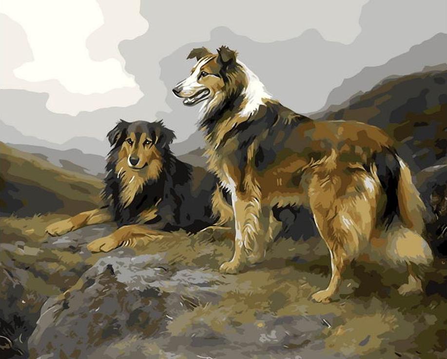 «Две собачки»Раскраски по номерам Menglei (Standart)<br><br><br>Артикул: MG8116_S<br>Основа: Холст<br>Сложность: сложные<br>Размер: 40x50 см<br>Количество цветов: 24<br>Техника рисования: Без смешивания красок