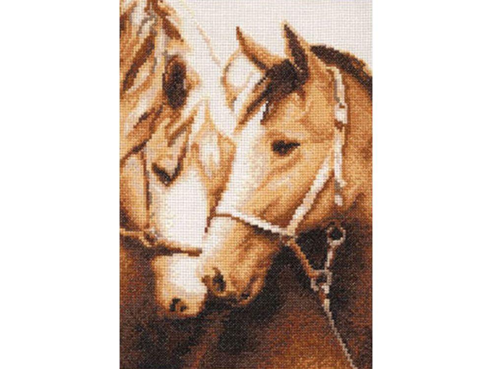 Набор для вышивания «Преданность»Вышивка крестом Золотое Руно<br><br><br>Артикул: З-010<br>Основа: канва Aida 14<br>Размер: 26,5x18,5 см<br>Техника вышивки: счетный крест<br>Тип схемы вышивки: Черно-белая схема<br>Цвет канвы: Белый<br>Количество цветов: 12<br>Заполнение: Частичное<br>Рисунок на канве: не нанесён<br>Техника: Вышивка крестом<br>Нитки: мулине Madeira