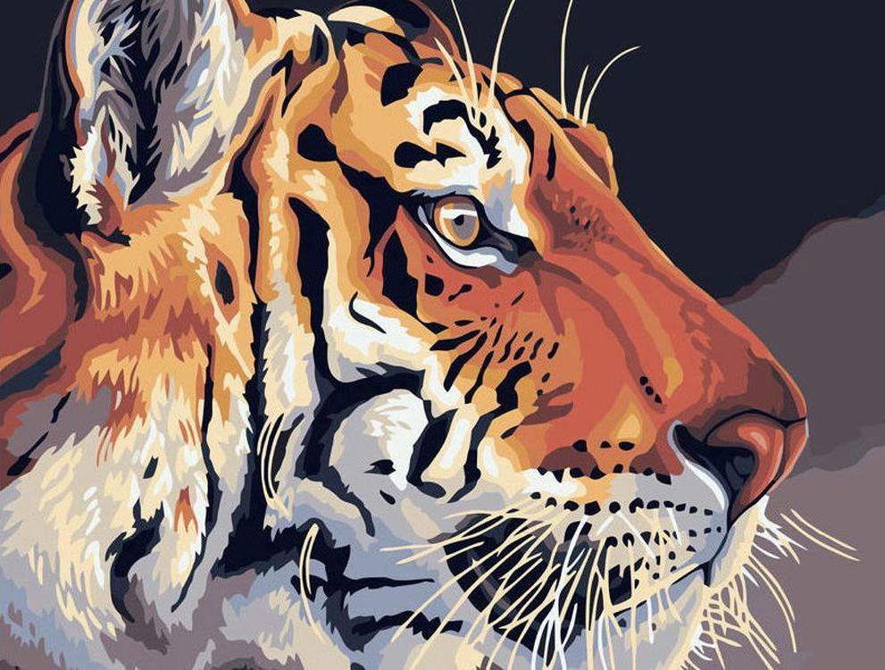 Картина по номерам «Тигр»Картины по номерам Белоснежка<br><br><br>Артикул: 508-CG<br>Основа: Холст<br>Сложность: средние<br>Размер: 40x50 см<br>Количество цветов: 21<br>Техника рисования: Без смешивания красок