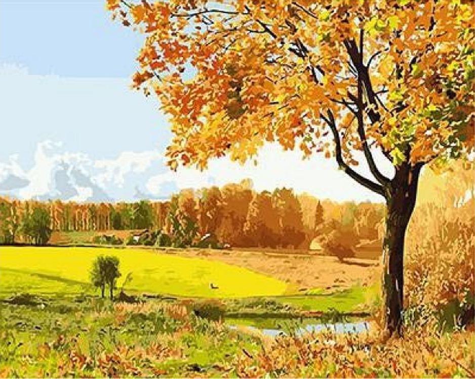 «Осенний пейзаж»Paintboy (Premium)<br><br><br>Артикул: GX3116<br>Основа: Холст<br>Сложность: средние<br>Размер: 40x50 см<br>Количество цветов: 24<br>Техника рисования: Без смешивания красок